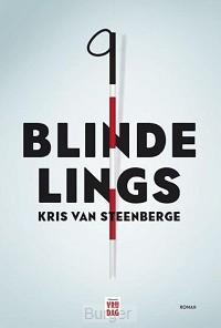 Blindelings Luisterboek