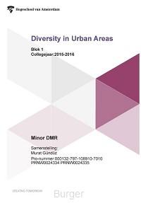 Diversity in urban areas