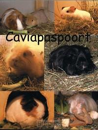 CAVIAPASPOORT