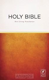 Outreach Bible