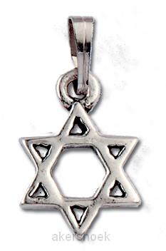 Hanger zilver davidster 13mm