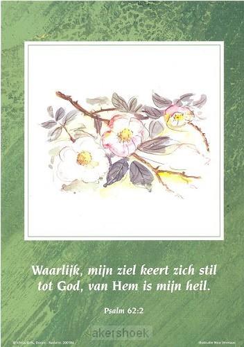 Poster a4 ps 62:2 waarlijk mijn ziel...