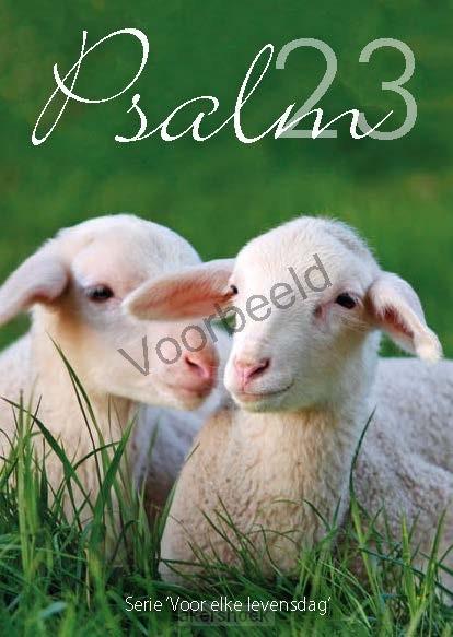Psalm 23  A6