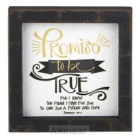 Framed Tabletop Jeremiag 29:11