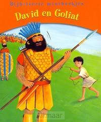 DAVID EN GOLIAT MINIBOEKJE