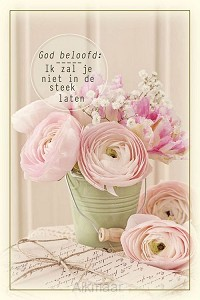 God belooft: Ik zal jou niet in de steek