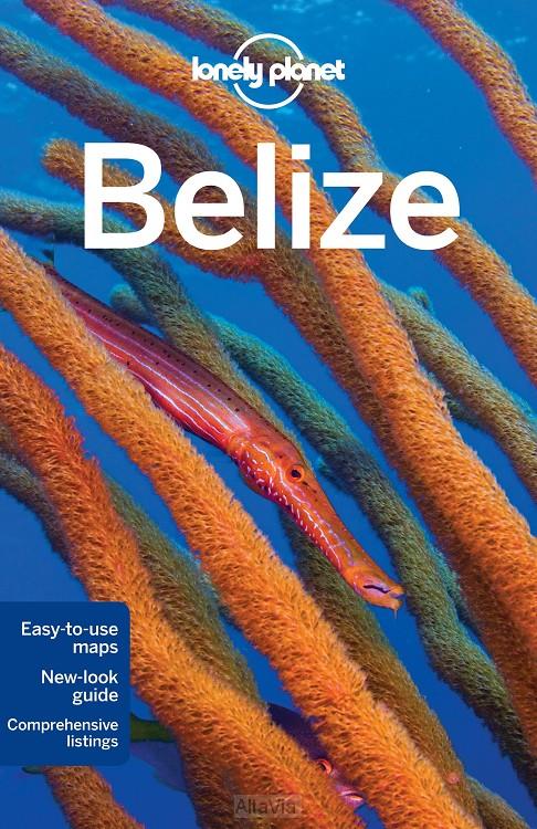 belize LP 2013