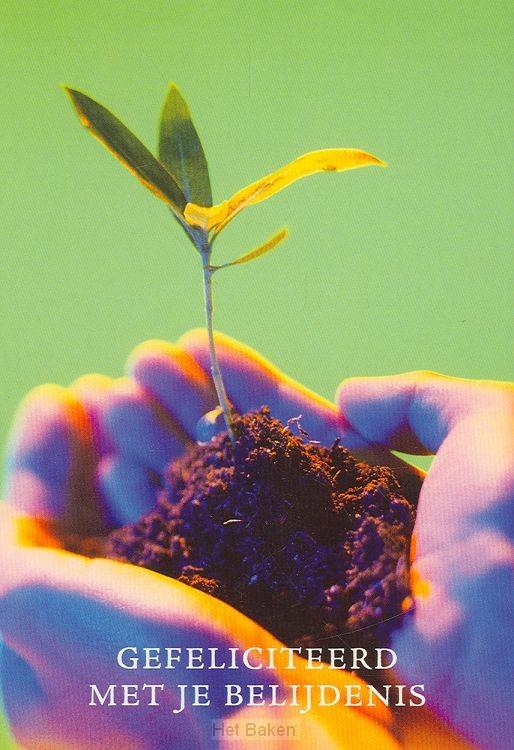 WK BELIJD ZT PLANT IN HAND