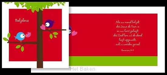 ADAJA CARDS BELIJDENIS