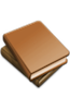 BIJBELHOES 10.5X16.4X3 SAFFIAAN BRUIN
