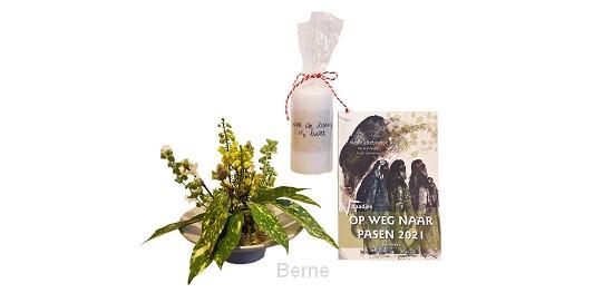 Paaspakket bloemsteker, kaars en zaadjes
