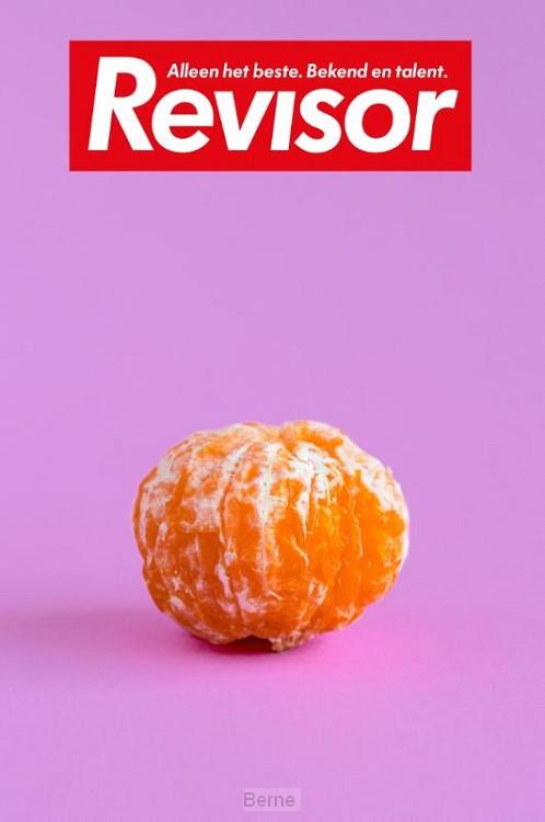 Revisor / 14