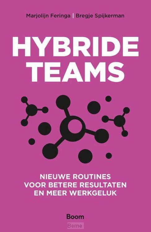 Hybride teams