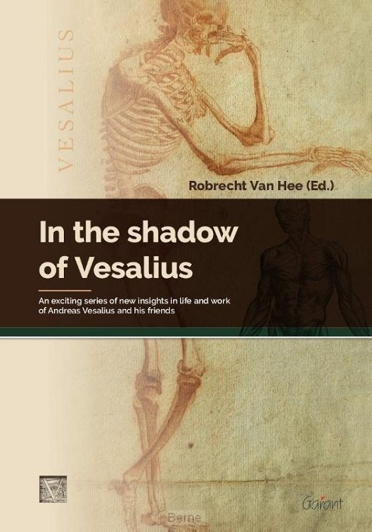 In the shadow of Vesalius