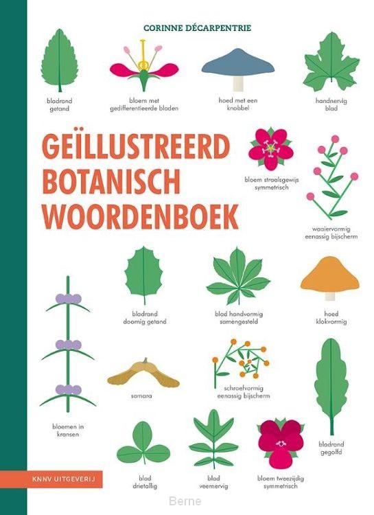 Geïllustreerd botanisch woordenboek