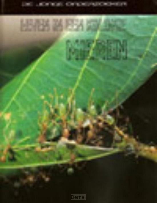 Leven in een kolonie mieren