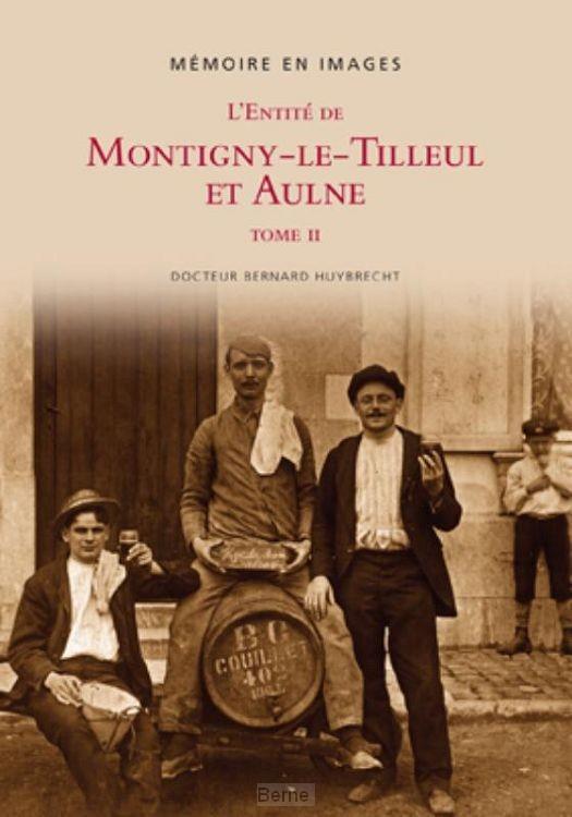 L'entité de Montigny-Le-Tilleul et Aulne /  tome II