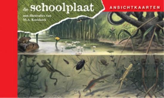Ansichtkaarten, de Schoolplaat / In Ons