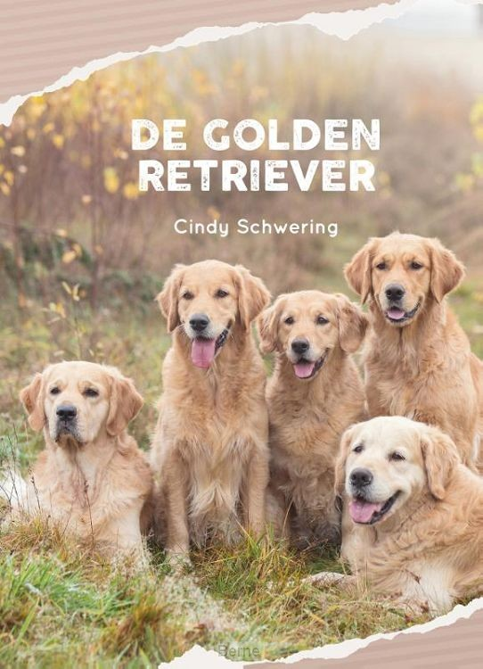 De Golden Retriever