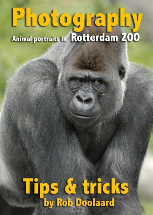Photography: animal portraits in the ZOO