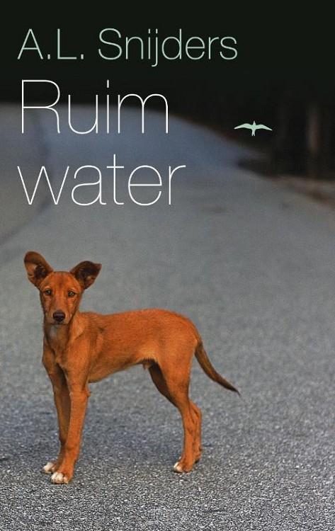 Ruim water