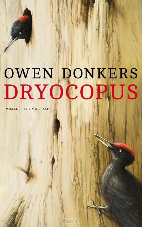 Dryocopus