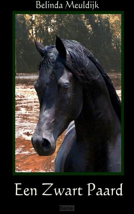 Een zwart paard