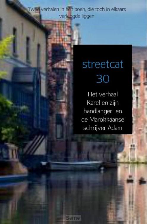 Streetcat 30