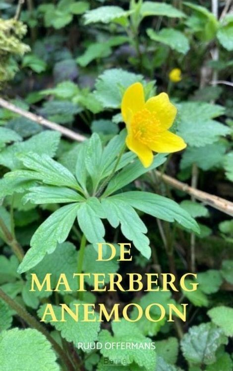 De Materberg anemoon