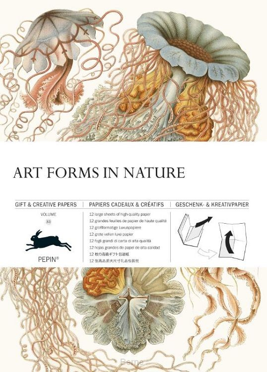 Art Forms in Nature / Volume 83
