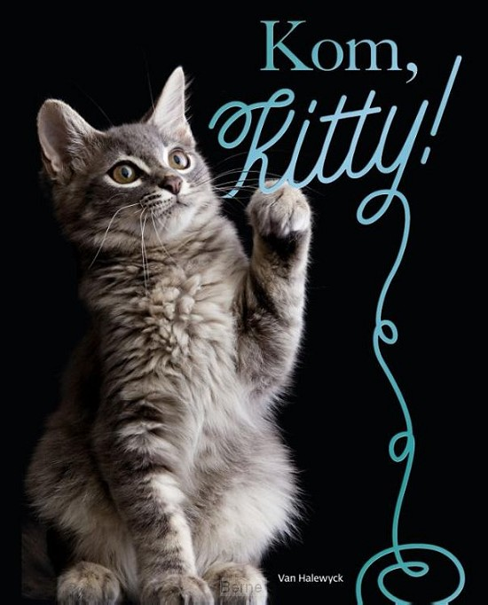 Kom. Kitty!