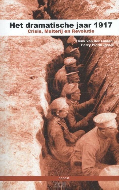 Het dramatische jaar 1917