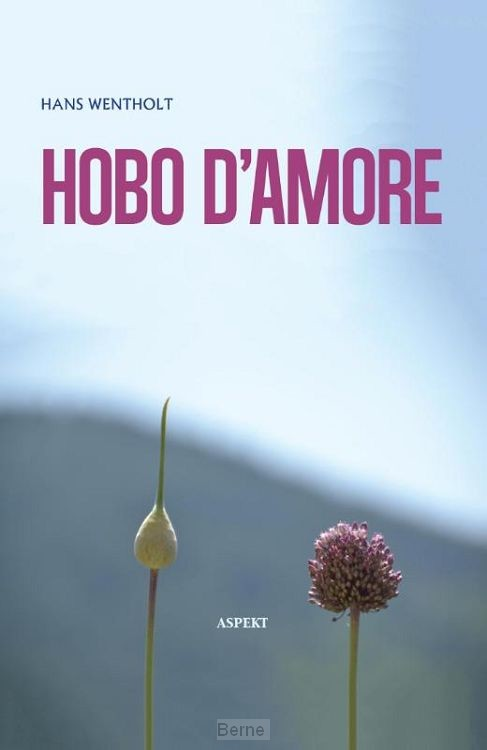 Hobo d'amore