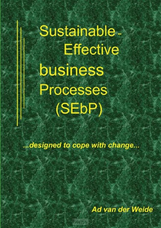 Sustainable-effective business processes (SEbP)