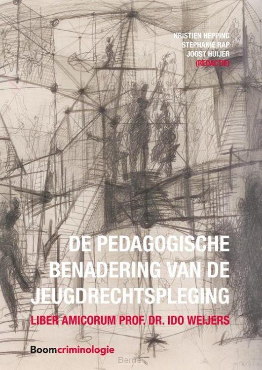 De pedagogische benadering van de jeugdrechtspleging