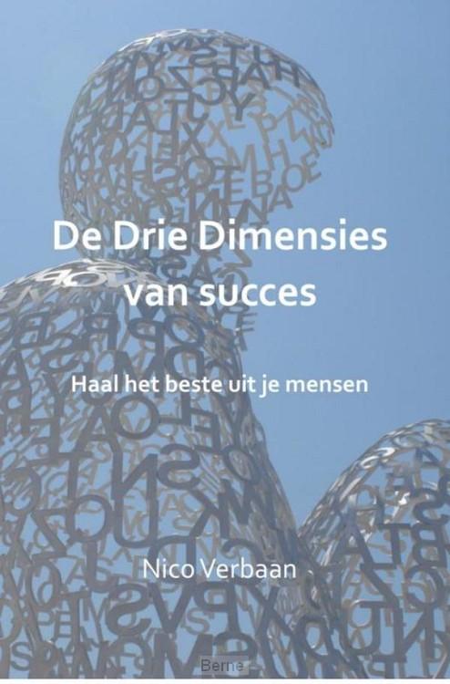 De drie dimensies van succes
