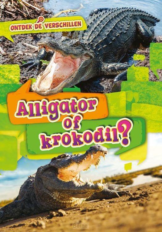 Krokodil of alligator?