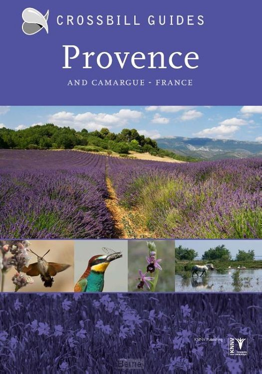 Provence and Camargue