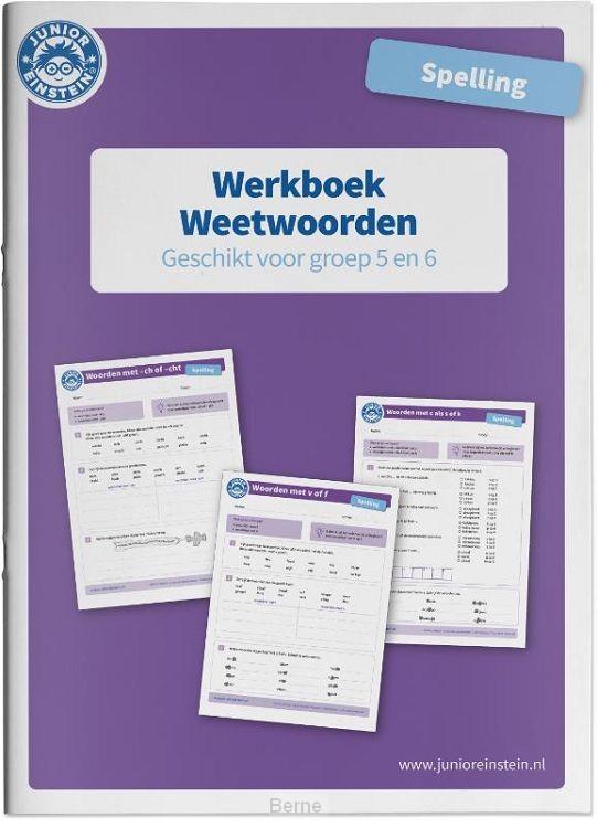 Weetwoorden geschikt voor groep 5 en 6 / Spelling / Werkboek