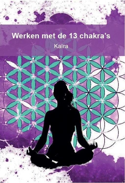 Werken met de 13 chakra's