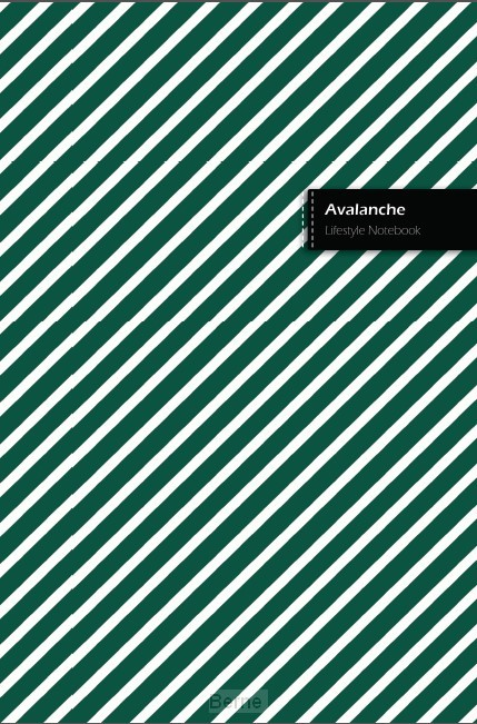 Avalanche II Lifestyle Notebook, Write-in Dotted Line, 6 x 9 Inch (US Trade), 180 Pages (90shts)