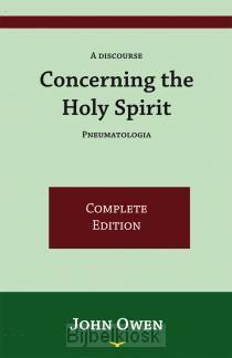 Concerning The Holy Spirit, Pneumatologi