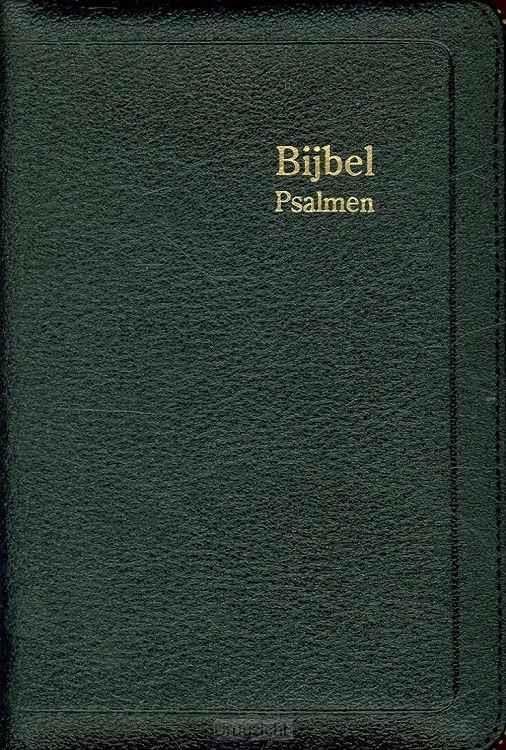 Bijbel D35R RITMISCH leer goudsn