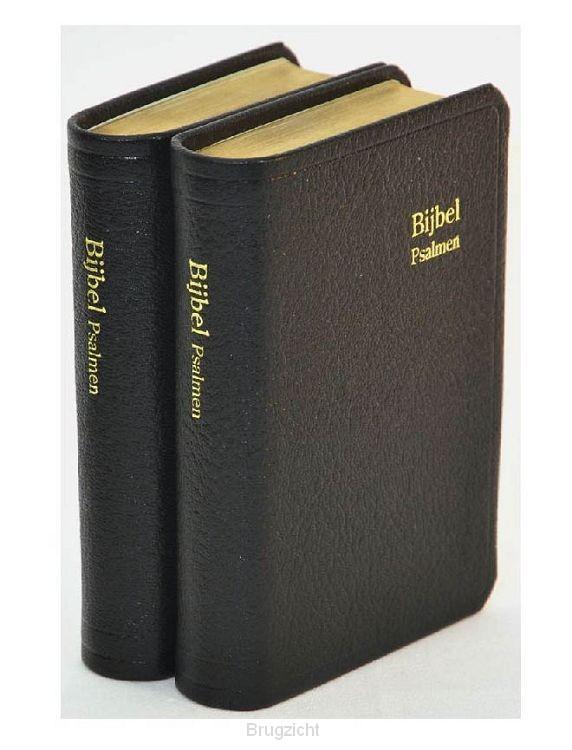 Bijbel D32R RITMISCH leer goudsn