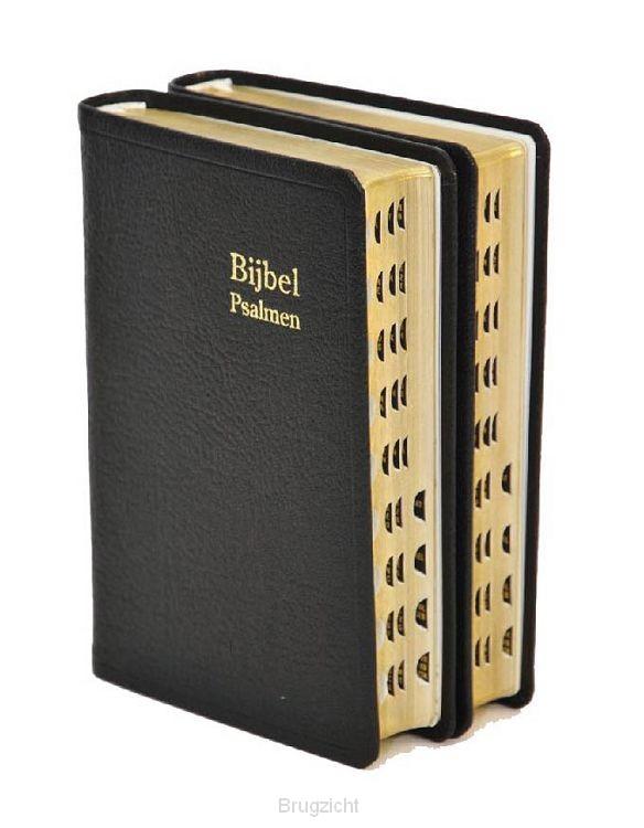Bijbel D34R RITMISCH leer goudsn