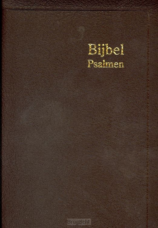Bijbel H35R RITMISCH leer goudsnee