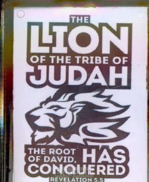Sleutelhanger Lion of Judah