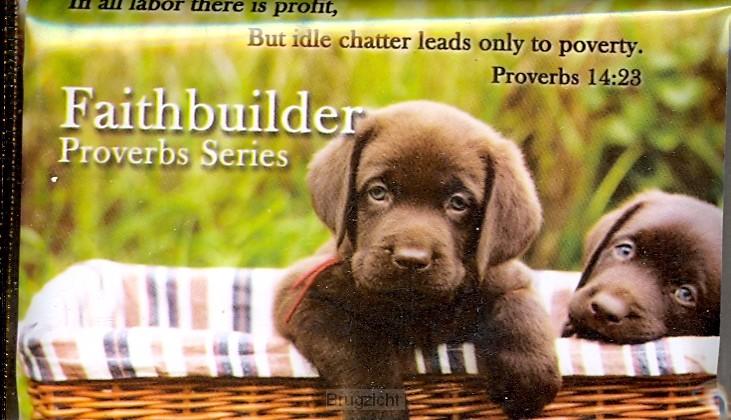 Faithbuilder proverbs series