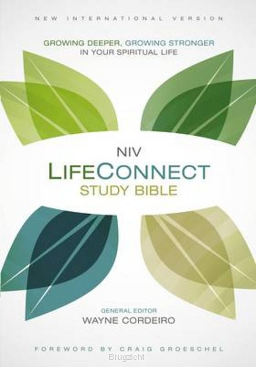 NIV, life connectsbible