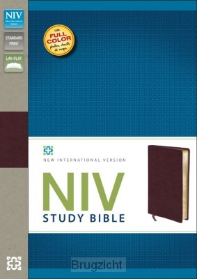 Study Bible Bonded leather burgundy
